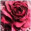 sassyinkpen: (Flower)