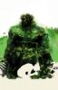 alec_swamp: (original) (Default)