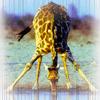 tochkajo: (жираф)