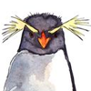 penguin: (PENGUIN)