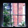 zu1eika: (window)