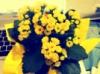 azure7539: (flower)