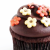 dettiot: (cupcake)
