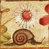 traballenguas: (snail of life)