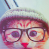 badjujuboo: (Geek Cat is Geeky)