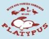 micahchaplin: (Platypus)