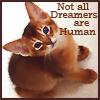 alainn_aislinn: (Aislinn kitten)