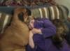 irina_sh: (Я с собаками)