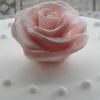 rozabellalove: (Rose)