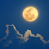 homoviator: (moon)