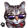 the_jubjub_bird: (cat in glasses)