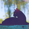 tehhie_shekk: (Black Cat)