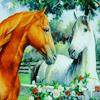lugovaya: (Лошади)