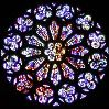 felaine: (rose window)