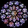 felaine: (rose window)