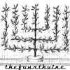 thefourthvine: Thefourthvine with an angular vine.  (TFV menorah)