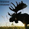 "thefourthvine: A moose, with the text ""Wanna moose?"" (Moose in blue)"