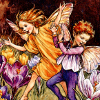 muscovy: (z fairies)