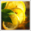 thefourthvine: Lemon slices and mint leaves. Yum! (Food)