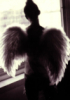 annwein: (Ангел)