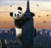 flying_bear: (небоскреб)