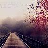 lapushka1: (мост)