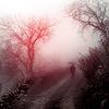 lapushka1: (Solitude)