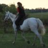 v_rednaia: (horse)