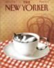 sensiblecat: (New Yorker)