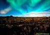 kittiwake: (Iceland)