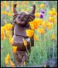 create_destiny: (spring buddha)