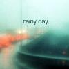 silly_seagull: (дождь)
