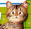 vodoleec: (кот)