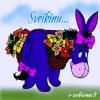 rhyme_addict: (Birhday Donkey)