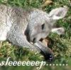 yinshubackup: (sleepy roo)