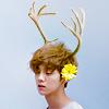 taxcha: (KyuWook | bw -cute)