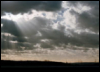 kl_sonnenblume: (Sturm)