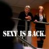 xdawnfirex: (NCIS - Gibbs & Jenny - Sexy Is Back)