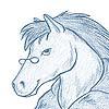 merri: (horse)