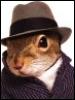 ardillita: (белк в шляпе)