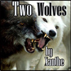 xanthefic: (ncis title two wolves)