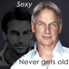 xanthefic: (ncis gibbs sexy never gets old)