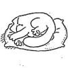 ftvn: (Sleep)