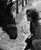 marfinca: (фотографируем лошадь)