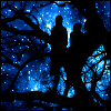 ext_20974: (Stars and Elves and Trees)