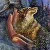 mielga: (волк на ладони by Josephin Wall)