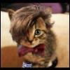 speedofmutation: (dr who kitteh)