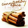 dreamingthevoid: (Cinnamon)