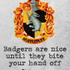 anacrusis: hufflepuff crest and quote (badgers are nice until they bite)