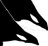 hapaxlegomenon: (orca)